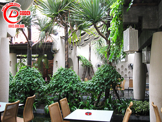 Công Trình Quán Cafe Tino 10