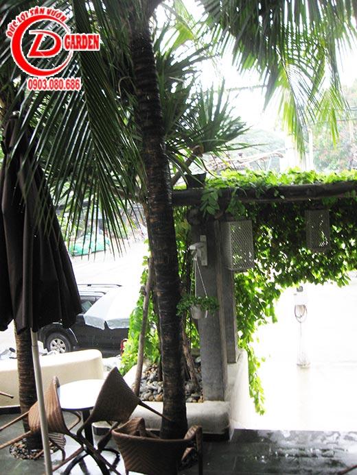 Công Trình Quán Cafe Tino 2