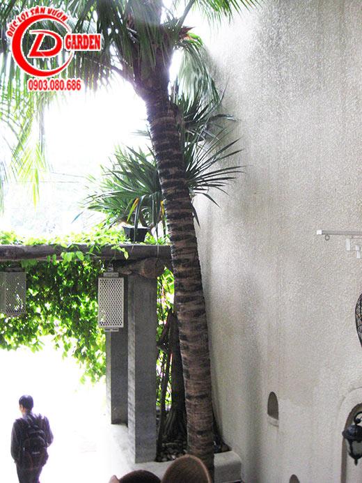 Công Trình Quán Cafe Tino 3