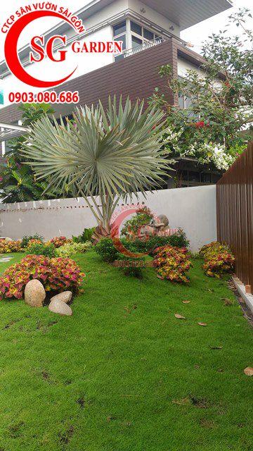 Hoàn Thành Sân Vườn Nhà Anh Sơn Quận 9 11
