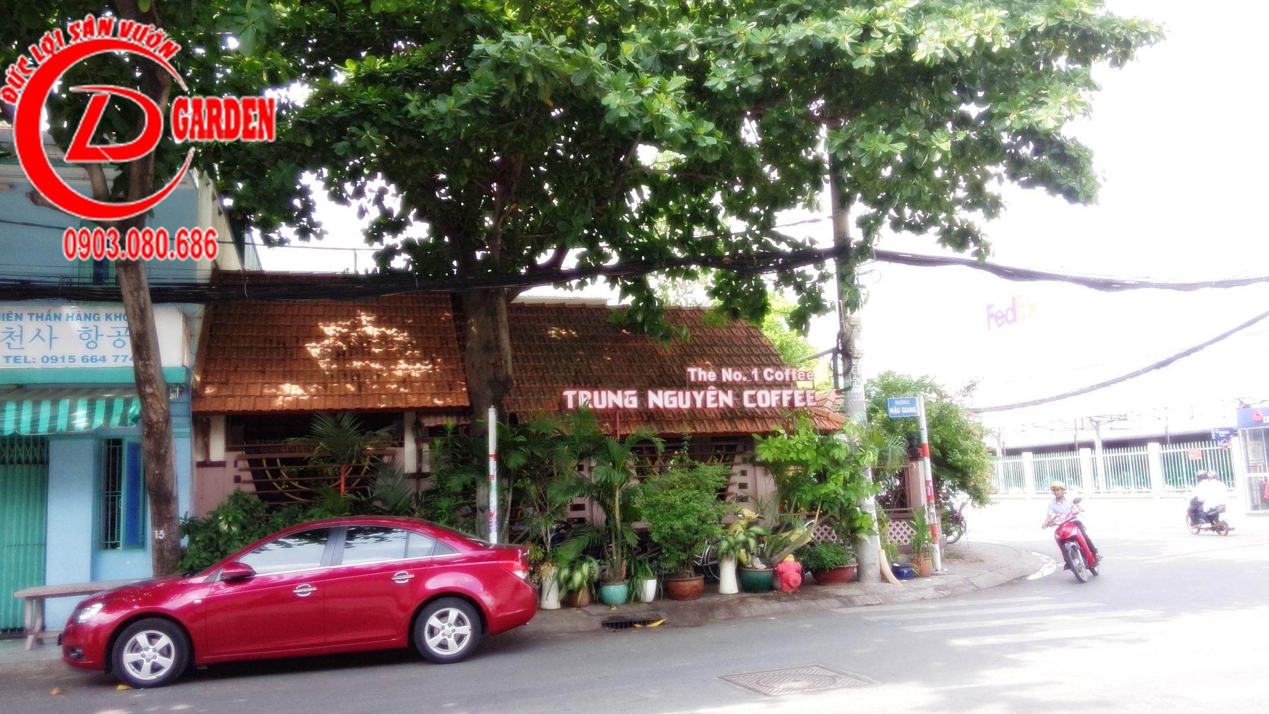 Công Trình Thi Công Sửa Chữa Quán Cafe Thoáng Mơ 4