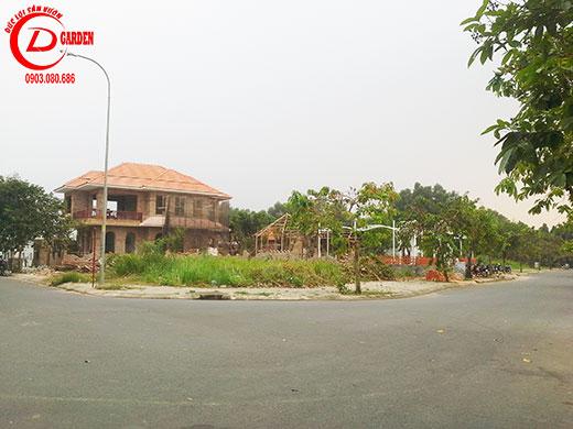 Công Trình Quán Cà Phê Trần Não Quận 2 1