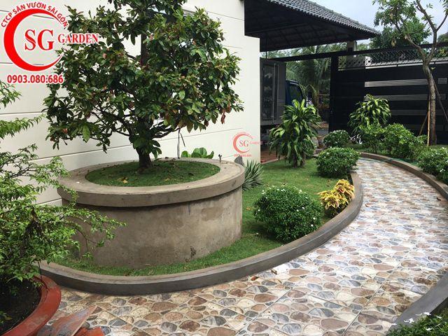 Hoàn Thành Sân Vườn Biệt Thự Anh Hùng Quận 2 5