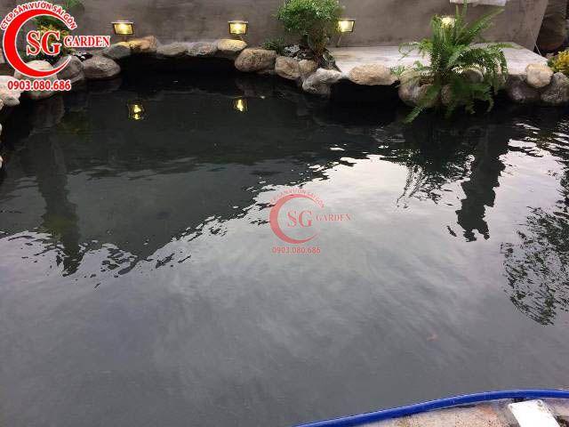 Thi công hồ cá sân vườn công ty Vision Asia 7