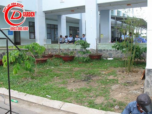 Công Trình Trường Tiểu Học Tân Kiên 1