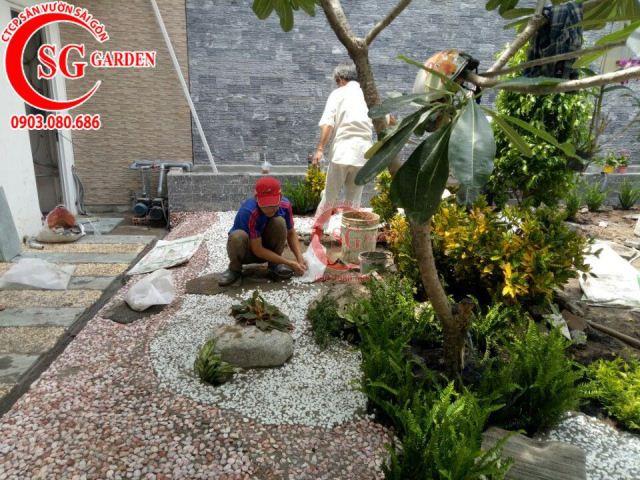 Thi công vườn nhà cô Vân Bình Thạnh 6