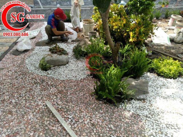 Thi công vườn nhà cô Vân Bình Thạnh 8