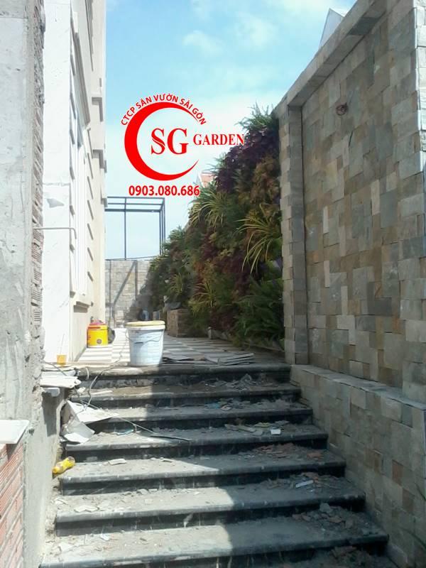 Thi Công Vườn Tường Nhà Bác Sĩ Long Quận 7 8