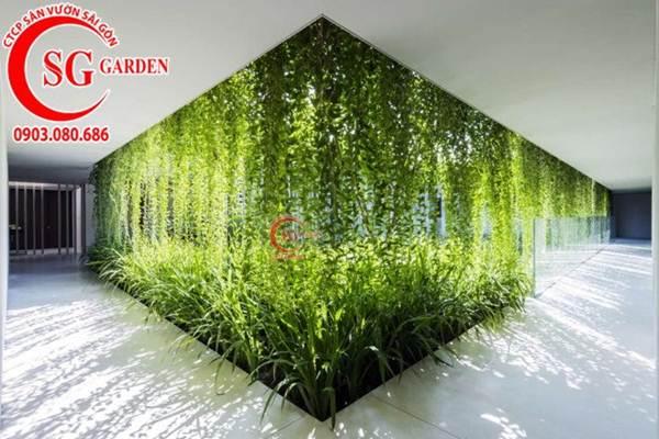 Thiết kế thi công vườn tường 10