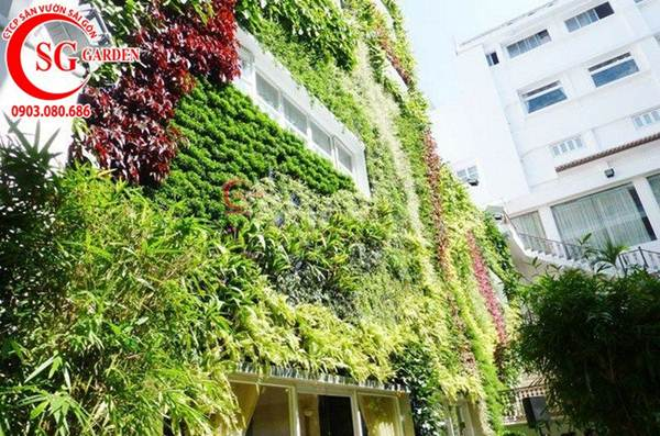 Thiết kế thi công vườn tường 14