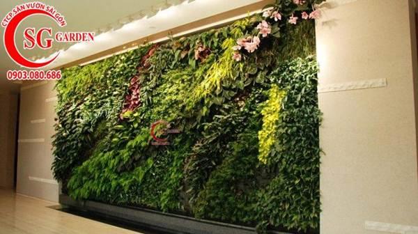 Thiết kế thi công vườn tường 19
