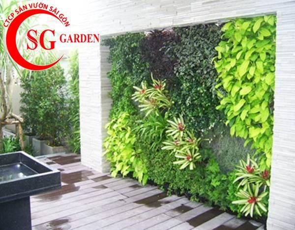 Thiết kế thi công vườn tường 25