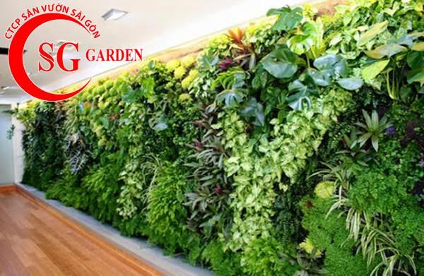 Thiết kế thi công vườn tường 28