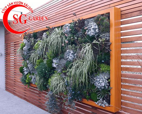 Thiết kế thi công vườn tường 6