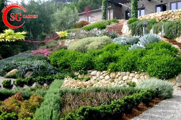 bố trí sân vườn