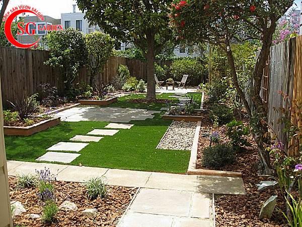 cây trang trí sân vườn 2