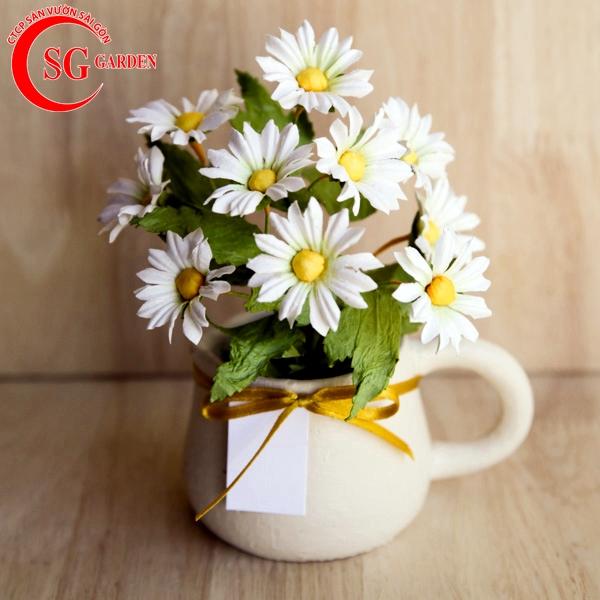 hoa cúc