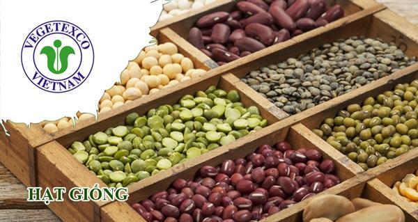 cung cấp hạt rau giống 10