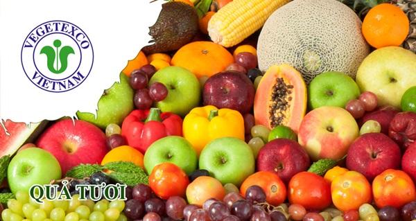cung cấp hạt rau giống 9