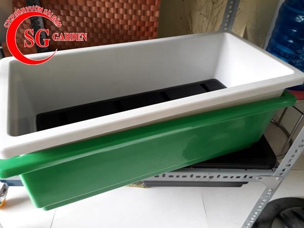 cung cấp khay nhựa trồng 3