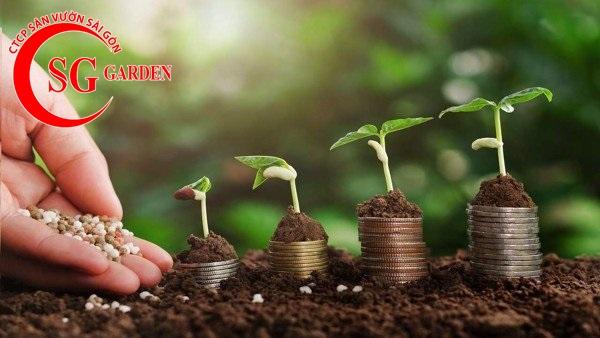 cung cấp phân sạch trồng cây 4