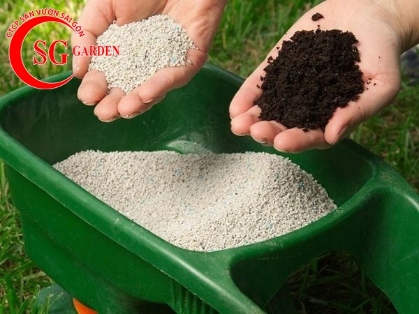 cung cấp phân sạch trồng cây 5