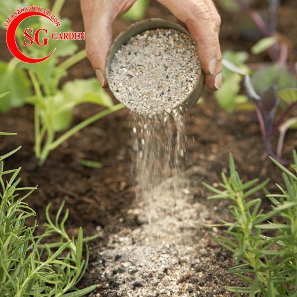 cung cấp phân sạch trồng cây 8