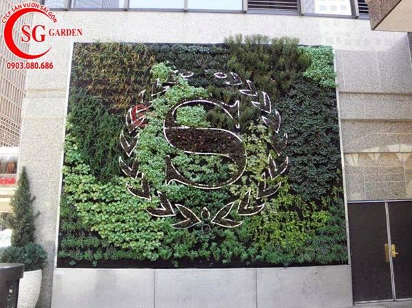 vườn tường ban công 8