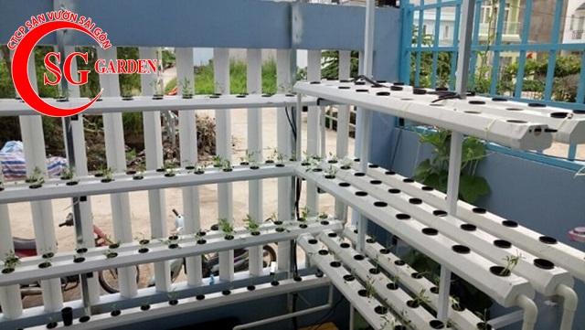 thiết kế vườn rau thủy canh sân thượng 12