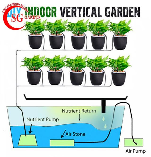 thiết kế vườn rau thủy canh sân thượng 6